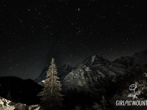 Alp im Mondschein